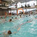 Doe mee aan de Zwem4daagse